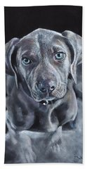 Blue Weimaraner Beach Towel