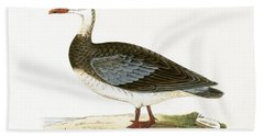 Blue Winged Goose Beach Towel by English School