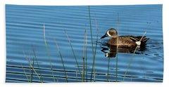 Blue Winged Teal Beach Towel