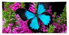 Blue Wings On Pink Flowers Beach Towel