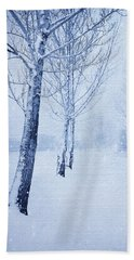 Blue Winter Path Beach Towel by Theresa Tahara