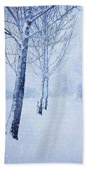 Blue Winter Path Beach Sheet
