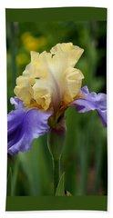 Blue Yellow Iris Germanica Beach Towel
