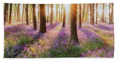 Bluebell Forest Path At Sunrise Beach Towel
