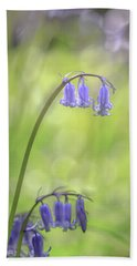 Bluebells Beach Sheet