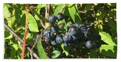Beach Towel featuring the photograph Blueberries by Artistic Panda