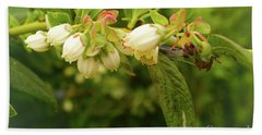 Blueberry Blossoms Beach Towel by Cassandra Buckley