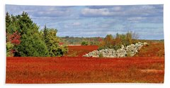 Beach Towel featuring the photograph Blueberry Field by Debbie Stahre