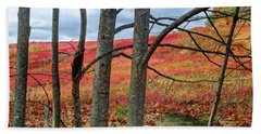 Blueberry Field Through The Wall - Cropped Beach Sheet