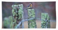 Beach Sheet featuring the photograph Bluebird 040517 by Douglas Stucky