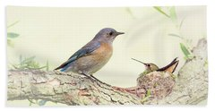 Bluebird And Baby Hummer Beach Sheet