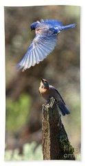 Bluebird Buzz Beach Sheet by Mike Dawson