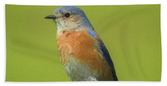 Bluebird Digital Art Beach Towel