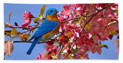 Bluebird In Apple Blossoms Beach Sheet by Marie Hicks