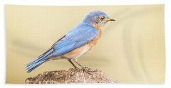 Beach Towel featuring the photograph Bluebird On Fence Post by Robert Frederick