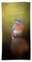 Bluebird On The Nest Pole Beach Towel
