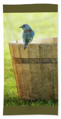 Bluebird Resting On Bucket, Textured Beach Sheet