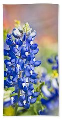 Bluebonnet 1 Beach Towel