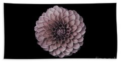 Blushing Dahlia  Beach Towel