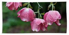 Blushing Dogwood Blooms Beach Sheet