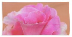 Beach Sheet featuring the photograph Blushing Rose by Cindy Garber Iverson