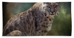 Bobcat Gaze Beach Towel