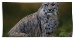 Bobcat On Alert Beach Towel