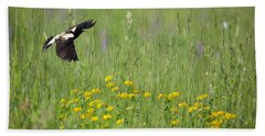 Beach Towel featuring the photograph Bobolink In Paradise by Bill Wakeley