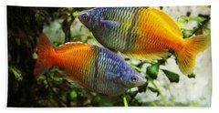 Boeseman's Rainbowfish Beach Sheet
