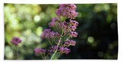 Bokeh Of Anacapri Flower Beach Sheet