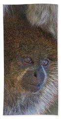 Bolivian Grey Titi Monkey Beach Towel