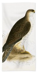 Bonelli's Eagle Beach Towel by English School