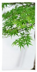 Bonsai Acer Tree Beach Sheet
