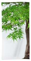Bonsai Acer Tree Beach Towel