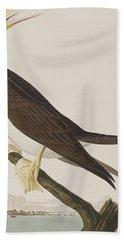 Booby Gannet   Beach Towel by John James Audubon