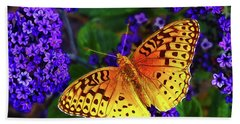 Boothbay Butterfly Beach Towel