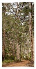 Beach Sheet featuring the photograph Boranup Drive Karri Trees by Ivy Ho
