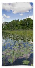 Borden Lake Lily Pads Beach Towel