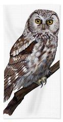 Boreal Owl Tengmalm's Owl Aegolius Funereus - Nyctale De Tengmalm - Paerluggla - Nationalpark Eifel Beach Towel
