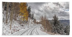 Beach Towel featuring the photograph Boreas Pass Tracks by Stephen Johnson