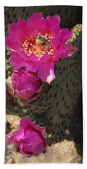 Borrego Springs Bloom 6 Beach Towel