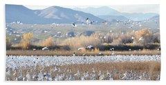 Bosque Del Apache Snow Geese Landscape Beach Sheet by Andrea Hazel Ihlefeld