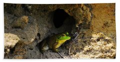 Beach Towel featuring the photograph Boss Frog by Al Powell Photography USA