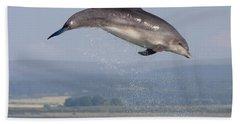 Bottlenose Dolphin - Scotland #3 Beach Sheet