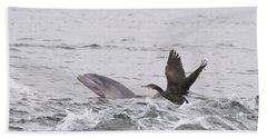 Baby Bottlenose Dolphin - Scotland #10 Beach Sheet