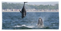 Beach Towel featuring the photograph Bottlenose Dolphins - Moray Firth Scotland #46 by Karen Van Der Zijden