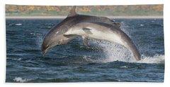 Beach Towel featuring the photograph Bottlenose Dolphins - Moray Firth Scotland #47 by Karen Van Der Zijden
