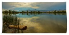 Beach Towel featuring the photograph Boulder County Colorado Calm Before The Storm by James BO Insogna