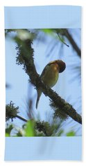 Bird Of Pray - Images From The Garden Beach Towel