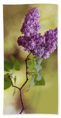Branch Of Fresh Violet Lilac Beach Sheet
